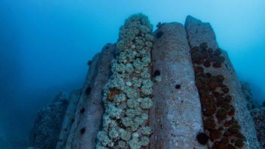 こんなにも幻想的で、神秘的で、美しい海があったのか。北海道積丹の海に酔いしれる。